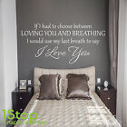 Loving You And Breating Wall Sticker Quote -  Bedroom Home Wall Art Decal X239