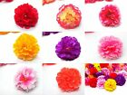 "Hawaiian Carnation Heads Artificial Silk Flower 2"" Wedding Make clip lapel leis"
