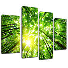 MSC301 Forest Roof View Canvas Wall Art Multi Panel Split Picture Print