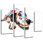 MA001 Rainbow Spots Smiling Dalmation Canvas Art Multi Panel Split Picture Print
