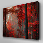 C259 Red Autumn Forest Canvas Wall Art Ready to Hang Picture Print