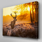 A217 Sunset Forest Plains Stag Canvas Art Ready to Hang Picture Print