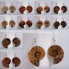 21-32mm Ammonite fossil dangle earrings 0.8-1.3""