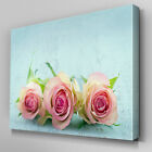 FL388 Pink Roses Blue Walls Canvas Wall Art Multi Panel Split Picture Print