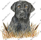 Black Lab Labrador Retriever Hunting Dog Home Camp Decal Decor Sticker Art Gift