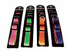 Neon Coloured Dog Collar with plastic buckle fastening