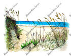 BEACHSCAPE SALTWATER BEACH DUNE GRASS VINYL HOME DECOR DECAL WALL MIRROR STICKER