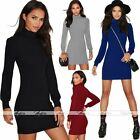 Rare Womens Warm Knit Long Sleeve High Collar Slim Bodycon Mini Dress