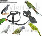 Fred Bird Harness and 6-Foot Leash - The Easiest, Safest Harness for Pet Birds