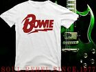 DAVID BOWIE  PUNK ROCK BAND T SHIRT MEN'S SIZES image