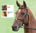 Shires Quality Salisbury Mexican Noseband Bridle size pony,cob, full and ex full