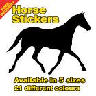 Horse Vinyl Sticker Decal -HRSE1