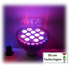 Bulb Phyto LED Horticultural Indoor Growing Hydroponic Lamp Epistar Gro/ Flo 36W