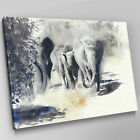A620 Grey African Elephants Marching Canvas Wall Art Animal Picture Large Print