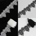 2 Yards 6cm off-White/Black Embroidered Net Lace Vintage Lace Trim Fit Sewing