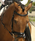 Rhinegold Leather Comfort Bridle with Crank Flash Noseband Rubber Reins ALL SIZE