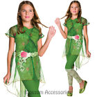 CK804 Girls Deluxe Poison Ivy Superhero Hero Batman Halloween Fancy Costume
