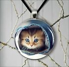 CAT KITTEN IN A PANT PLAYING ROUND PENDANT NECKLACE -iko9Z