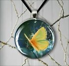 BUTTERFLY YELLOW WINGS INSECT ROUND PENDANT NECKLACE -ser6Z
