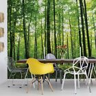 WALL MURAL PHOTO WALLPAPER XXL Forest Trees Green	Nature (186WS)