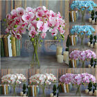 Butterfly Orchid Silk Flower Phalaenopsis Bouquet Home Table Desk Wedding Decor