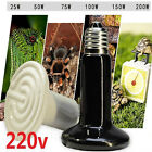 DZ1075 Ceramic Infrared Heat Emitter E27 Lamp Light Bulb for Reptile Pet 220V ♫