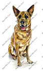 Chinook Dog Sticker Decal Quality Helmet Equipment Cooler Cup Gift Pet Painting