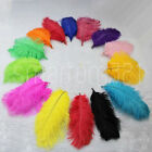 "8""-10"" Long Ostrich Feathers Wedding Decoration Costume Party Craft Mask Hat"