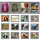 """16""""x20"""" (NO FRAME) DIY Paint By Number Kit On Canvas -- Beauty & Scenic & Animal"""