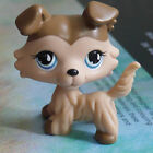 """LPS COLLECTION LITTLEST PET SHOP Brown Collie dog  RARE TOY 2"""" #"""