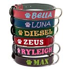 Personalized Black Brown Leather Padded Dog Collar Free Name Phone Number # ID