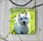 DOG WHITE WESTIE PENDANT NECKLACE 3 SIZES CHOICE -dht5Z
