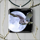 BIRD OWLS FLYING IN FULL MOON NIGHT PENDANT NECKLACE 3 SIZES CHOICE -hjr5Z