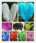 Wholesale 10-100 pcs High Quality Natural Ostrich Feathers 6-24 inches / 15-60cm