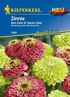 zinien Zinnia Elegans Red Lime & Green Lime