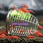 Stainless Shrimp Feeding Cage Dish Crystal Red Cherry Shrimp Fish Snail Tank