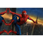 HD Canvas Painted Oil Painting Wall spider-man no frame Home decoration 2 size