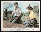 Rock Hudson Jean Simmons - This Earth is Mine - Autograph  *Hollywood Posters*