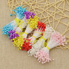 Внешний вид - 500 Pcs Floral Stamens Double Tips Flower Making DIY Supplies Home Decoration