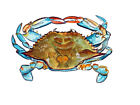 Blue Crab Overhead High Quality Printed Vinyl Decal Wall Window Car Sticker