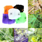 5 Colors Halloween Decoration Hanging Scary Spider Web Stretchy Cobweb Props
