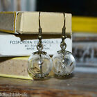 Handmade Real Dandelion Seed Glass Orb Earrings - Bronze Make a Wish Flower