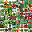 geometric shapes with names and picture - VARIETIES vegetable Seeds Heirloom retail package with name and picture