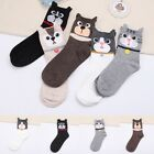 Cute Animal Cartoon Cat Dog Pattern Comfortable Cotton Socks for Women