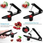 Cherry Pitters Tool, Professional Olive Cherry Stone Remover Fruit Pitter Black