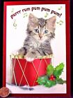 Adorable Tabby Kitten Cat Drum Music Holy  SHINY - Christmas Greeting Card - NEW