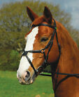 Rhinegold German Leather 'Comfort' Horse Bridle Mexican Sheepskin lined Noseband