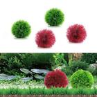Marimo Ball Filter Live Aquarium Aquatic Plants Fish Shrimp Tank Pet  Dec Dekor