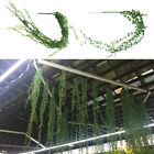 Artificial Flowers Silk Wisteria Ivy Vine Green Leaf Hanging Garland 1 Succulent
