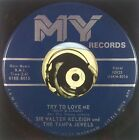 Sir Walter Releigh & The Tampa Jewels 45 ARK Garage Rock 1967 Try To Love Me M-